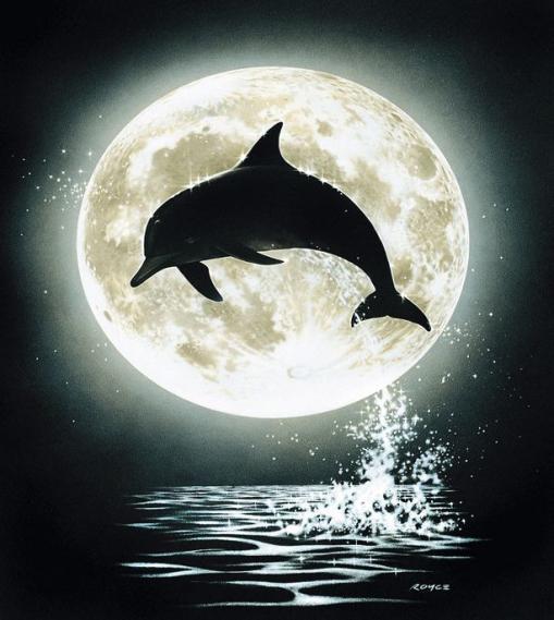 Mural Dolphin Moon EV1351