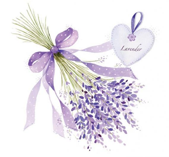 Fototapete Lavendel EV1373
