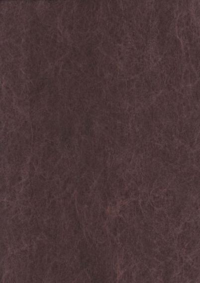 Non-woven wallpaper 440N23