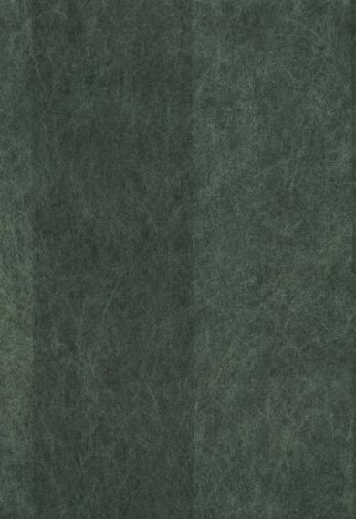 Non-woven wallpaper 440N25